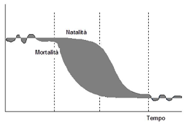 transizione-demografica.jpg