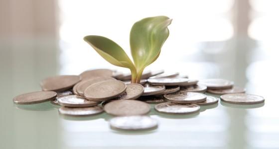 Tutto sul TFR: in azienda o sul fondo? Calcolo, rivalutazione, anticipo, liquidazione, rendimenti ed INPS